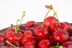 白砂糖bob手机版下载樱桃的方法